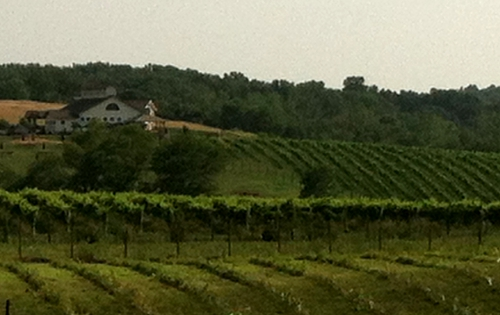 Barrel Oak Winery (Fauquier County)